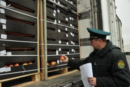 Псковские таможенники «накрыли» склад контрабандистов-фокусников