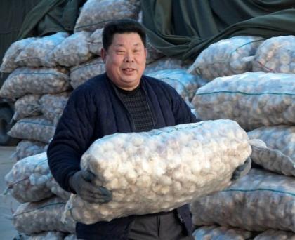 Китай будет экспортировать в Россию и Белоруссию «по чесноку»