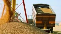 Пла́чу и плачу́ или особенности национального проезда зерновозов