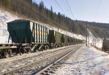 «Зерновые экспрессы» РЖД вывозят пшеницу из Сибири со спринтерской скоростью
