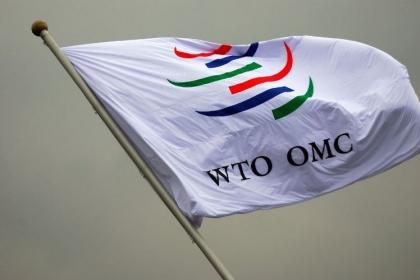 Не дождавшись консультаций, Россия предупредила ВТО о компенсациях