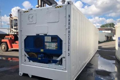 Если власти скажут «надо», операторы за год оборудуют свои рефконтейнеры термодатчиками