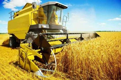 Российская пшеница дорожает, не теряя экспортной «привлекательности»