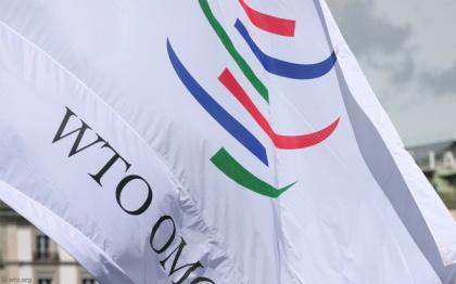 Судиться в ВТО и устраивать ответные пошлины – последнее дело. Сначала Россия попробует  договориться с США