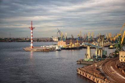 Для «Большого порта Санкт-Петербург» подыскивают варианты переселения. Загородные