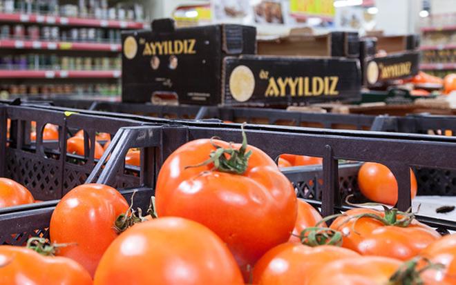 Минсельхоз попросил отложить возвращение турецких помидоров в РФ